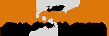 The Simonelli Real Estate Group Logo